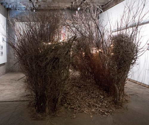 "Jean Albus and Norman Broomhall ""Into the Within"" at Hinterland Art Space"